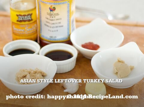 Asian Style Leftover Turkey Salad