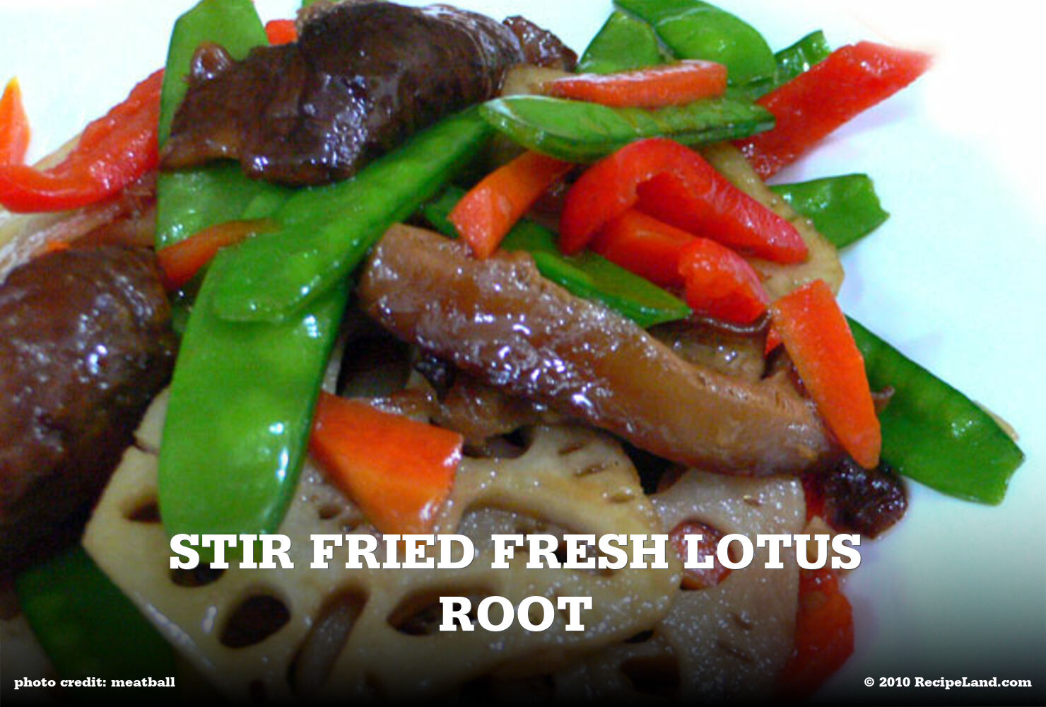 Stir Fried Fresh Lotus Root
