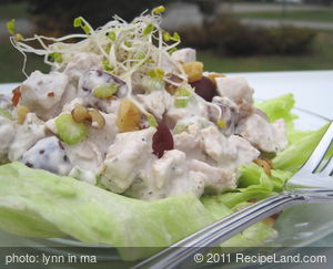 Chicken Salad Contessa