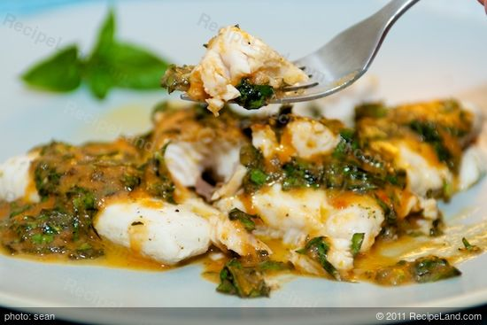 Poached fish with tomatoes and basil recipe for How to poach fish