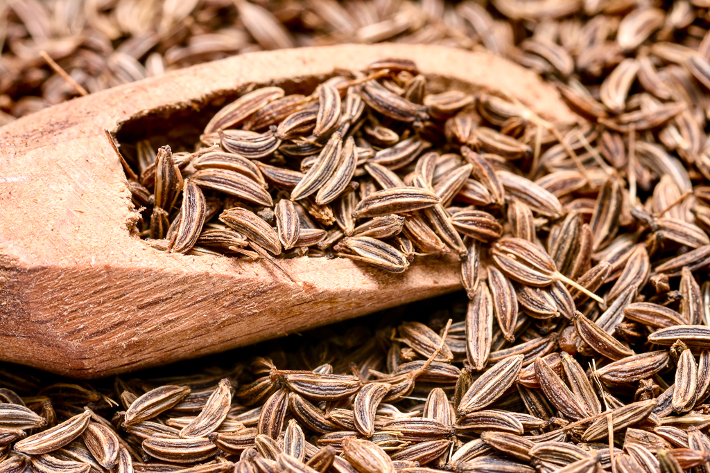 Caraway seed close-up