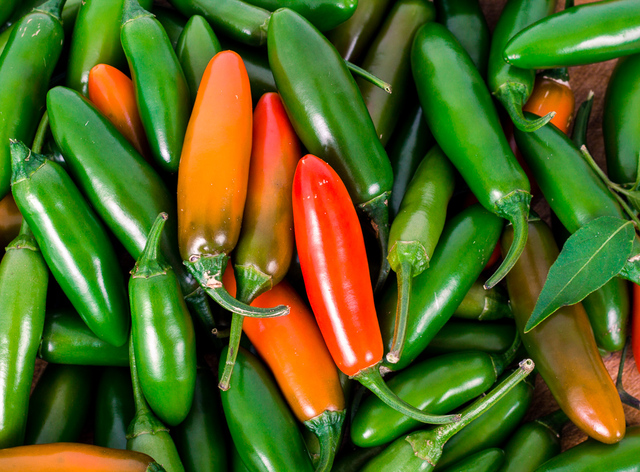 serrano red and green chili peppers