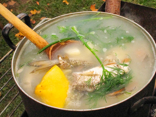 Fish stock nutrition data where found video and 103 recipes for Fish stock recipe